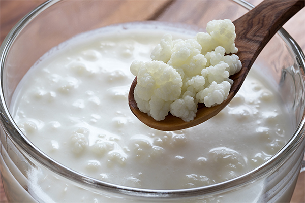 kefir é low carb